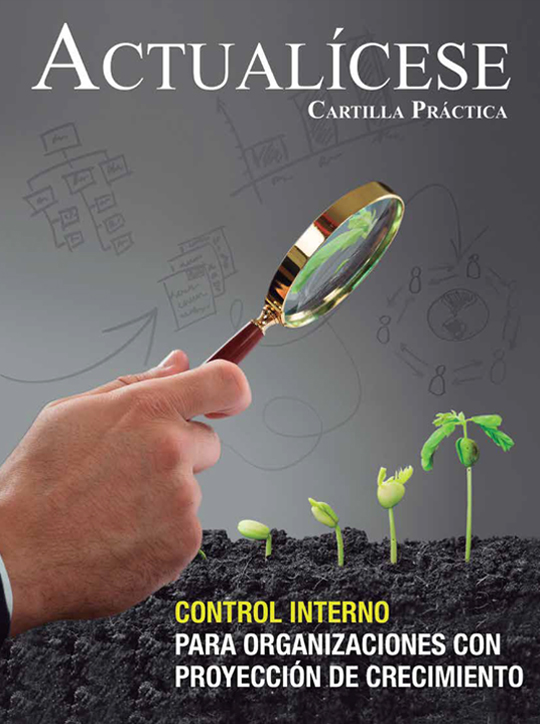 [Cartilla Práctica] Control interno para organizaciones con proyección de crecimiento