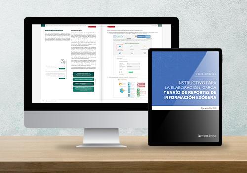 Cartilla Práctica: instructivo para elaboración, carga y envío de reportes de información exógena 2020