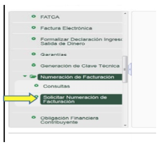 Microsite sobre el nuevo servicio virtual de Numeración de Facturación es lanzado por la DIAN