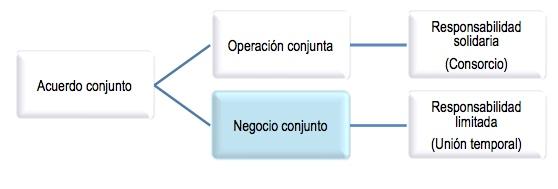 Negocio conjunto: definición según los Estándares Internacionales