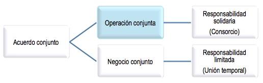 Operación conjunta: definición según los Estándares Internacionales