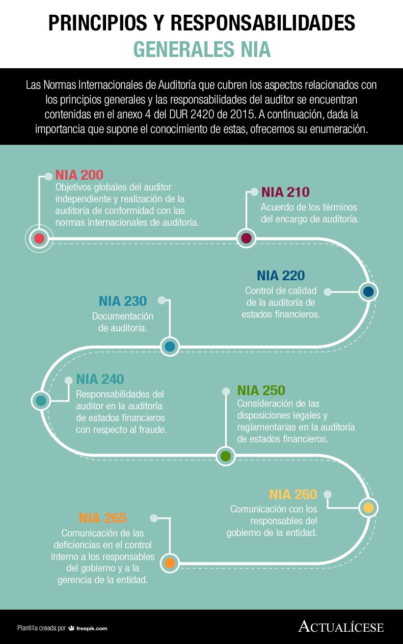 [Infografía] Principios y responsabilidades generales NIA