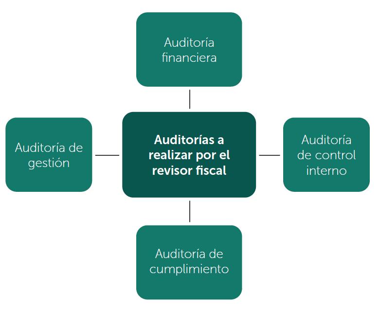 Tipos de auditorías que hace el revisor fiscal