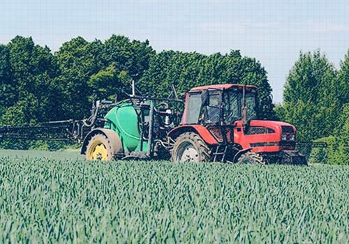 Empleos verdes: ¿cuáles sectores económicos tienen potencial para crearlos?
