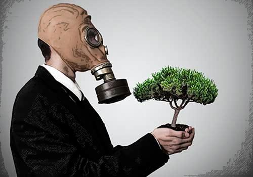 Preservación del medio ambiente y los recursos naturales: ¿cómo debe actuar la contaduría pública?