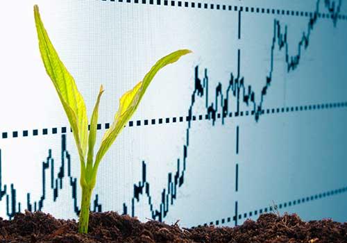 Contabilidad ambiental: una alternativa para que empresas hagan buen uso de los recursos naturales