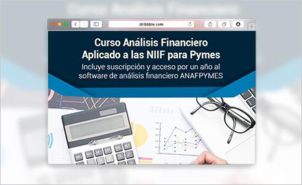 Virtual - Curso en línea de Análisis Financiero + Software financiero Aplicado a las NIIF para Pymes
