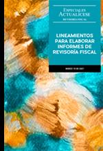 Especial: Lineamientos para elaborar informes de revisoría fiscal