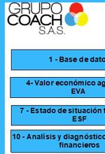 SIXDE: Sistema experto de diagnóstico Empresarial – Grupo Coaching en finanzas