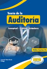 Teoría de la Auditoría – Nueva Legislación