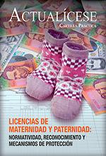 [Cartilla Práctica] Licencias de maternidad y paternidad: normatividad, reconocimiento y mecanismos de protección