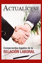 [Cartilla Práctica] Componentes Legales de la Relación Laboral