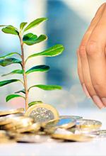 Agricultura e Intangibles: manejo bajo el Estándar Internacional para Pymes