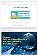 COMBO Curso en línea Taller Instrumentos Financieros NIIF + Certificación Experto NIIF – Escuela de Finanzas y Negocios