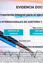 Herramienta Integral para el ejercicio de la Revisoría Fiscal – Walter Ante