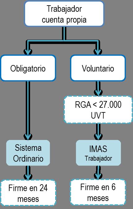 Sistema para determinar el impuesto de renta de personas naturales en la categoría de trabajadores por cuenta propia